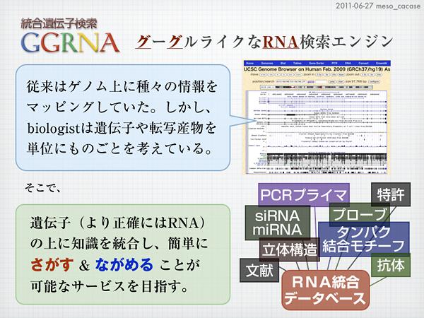 mesoの実験ノート - GGRNAの「統...